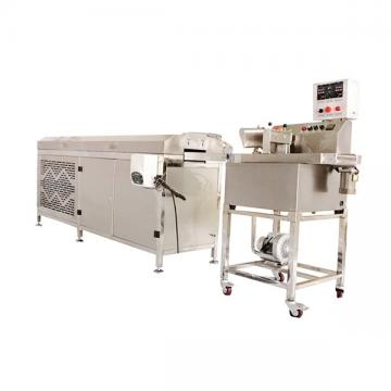Chocolate Bar Printing Production Machine for Small Business Mini Chocolate Coating/Enrobing Machine Chocolate Glaze Machine Price