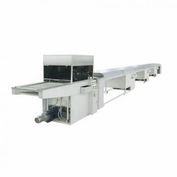 Chocolate Bar/Peanut Candy /Ice Weigher Packaging Auto Weighing Granule Packing Machine