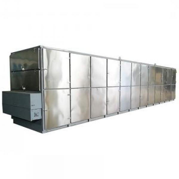 Maize Microwave Drying and Sterilizing Equipment