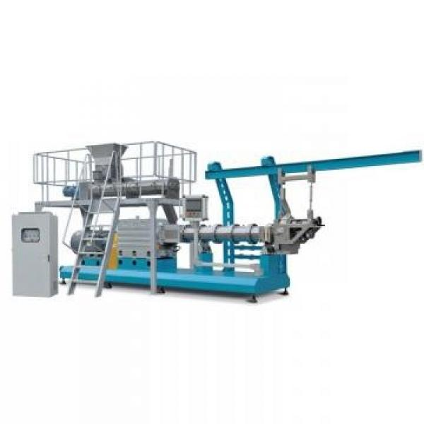 Automatic Instant Corn Flake Processing Line with Manufacturer Price