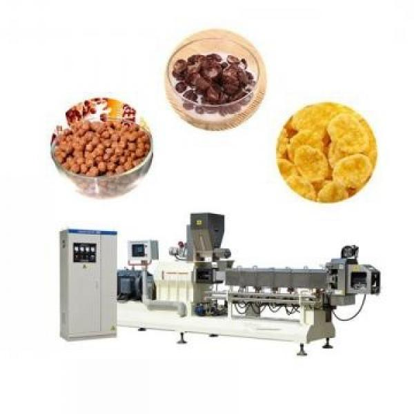 Factory Supply Breakfast Cereal Production Line