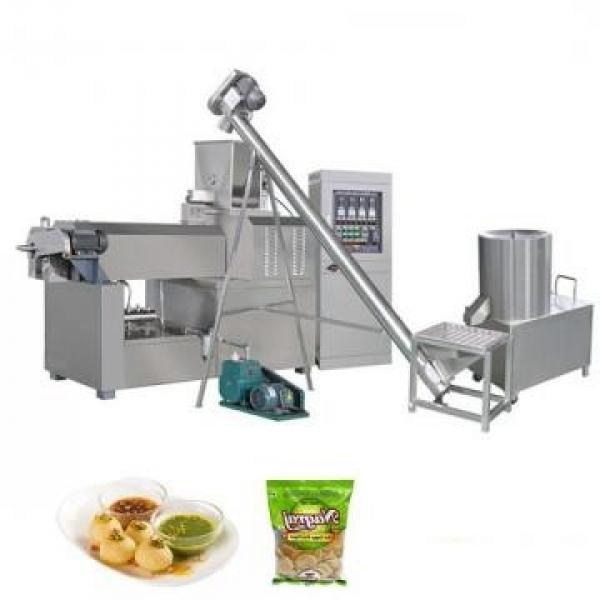 Stainless Steel Electric Fryer (CE Approved) Food Processor Snack Food Processing Line and Making Pressure Fryer Machine