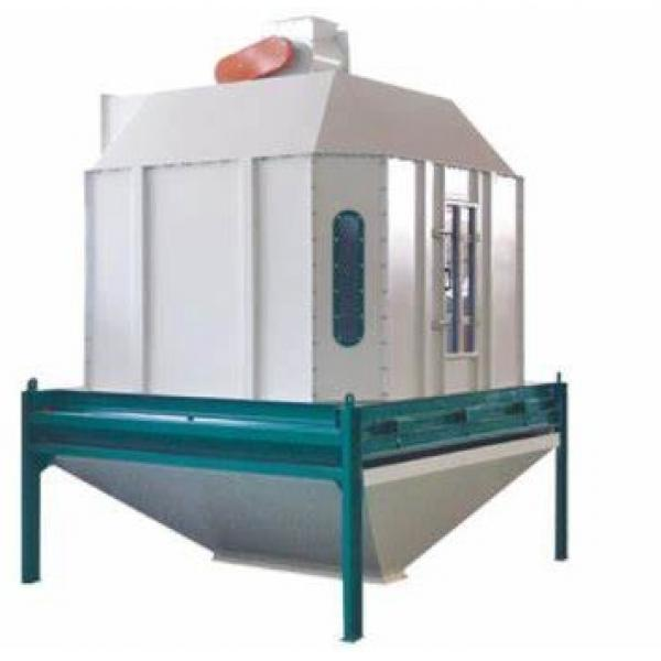 Large Capacity Dog Cat Fish Pet Food Bird Chicken Feed Extruder Machine Production Line
