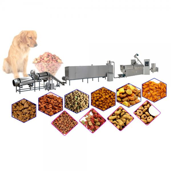 Automatic Dry Type Cat Dog Pet Food Production Line