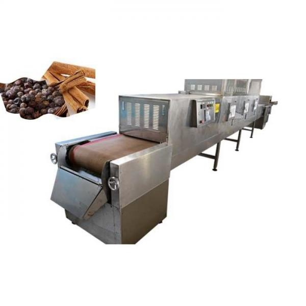 PLC Control Black Soldier Fly Larva Microwave Drying Machine