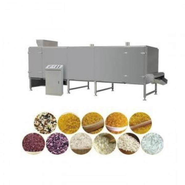 Nutrition Rice Making Machine/Artificial Rice Extruder/Artificial Rice Production Line