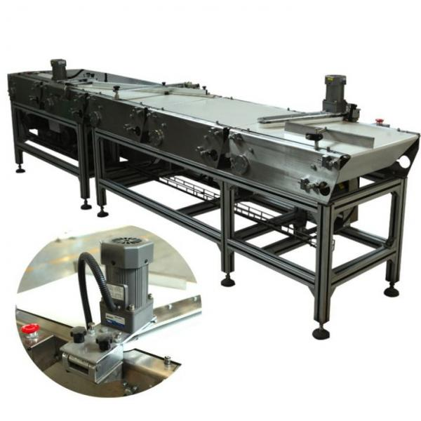 Production Line Machines for Snickers