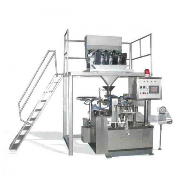 Automatic Pet Food Sunflower Seeds Chips Date Bag Packing Machine