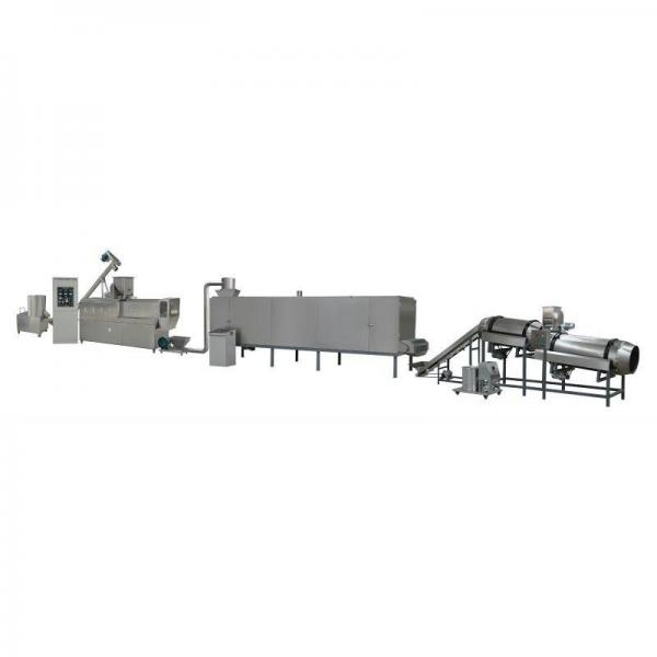 Zsz Horizontal Pre-Made Bags Doypack Packing Machine for Pet Food