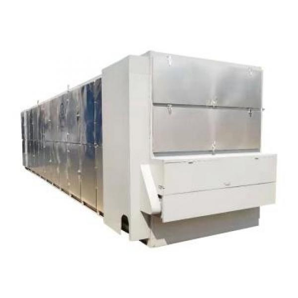 40kw 40kg / H Industry Ginkgo Seed Microwave Curing Drying Equipment