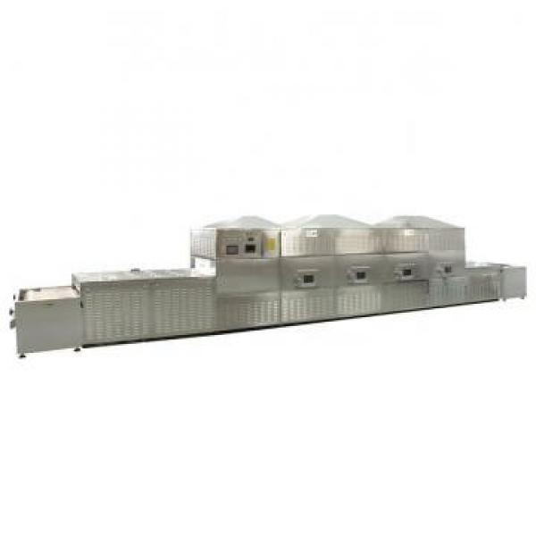 Carbinet with Hanging Basket Microwave Drying Equipment