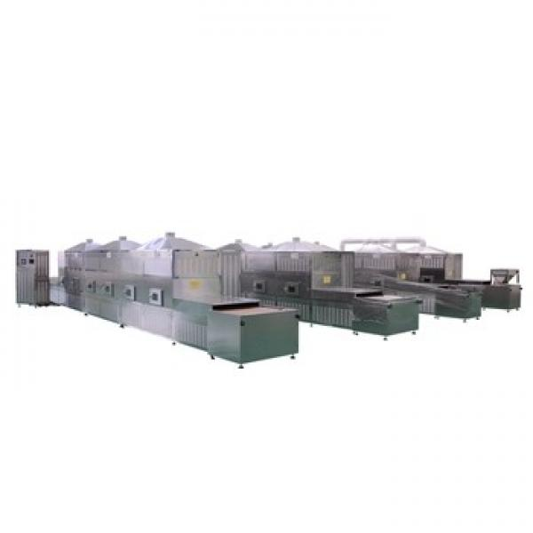 Mealworms Microwave Drying Equipment for Small Quantity