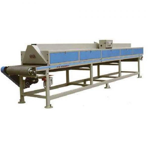 Large Industrial Continuous Microwave Food Belt Drying Dryer Equipment