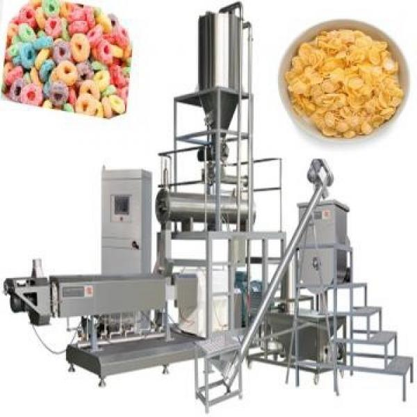Automatic High Capacity Twin Screw Food Snack Puff Extruder