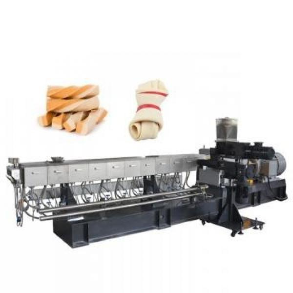 Snack Extruder with Double Screw for Puff Extrusion Food