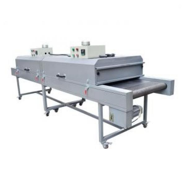 Commercial Stainless Steel 240 mm Roller Pasta Making Machine