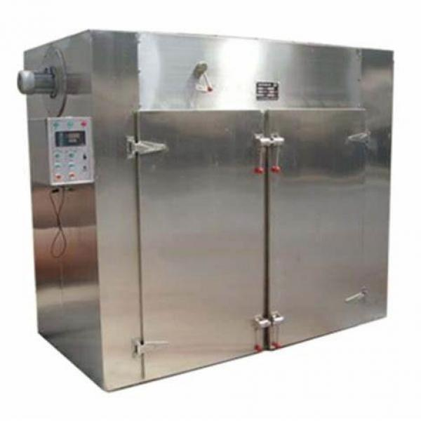 High Capacity Commercial Pasta Processing Machine
