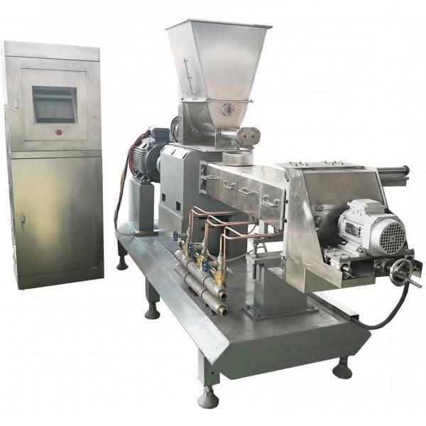 Small Oil Free Maize Snack Chips Production Line Making Machines