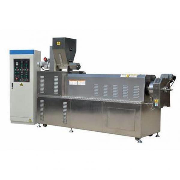 Twin Screw Extruder Fully Automatic Corn Puff Small Snack Pellets Food Extruder Making Machine Puffed Corn Snacks Food Processing Machine
